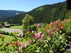 Blick vom Löckenwaldhof
