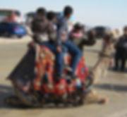 Kopi af Egypten 275_edited.jpg