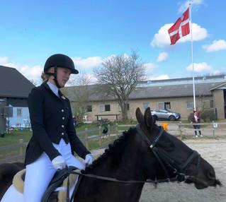Et ridestævne med mange hestekræfter