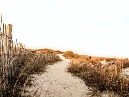 To share or not to share: when is a prescriptive easement reasonably necessary?