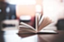 NIRITEXT | חוות דעת ספרותית
