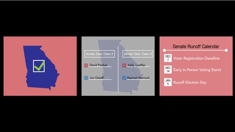 Georgia Senate Runoffs