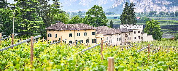 Castelfeder winery.jpg