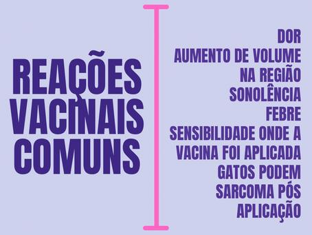 Reações vacinais