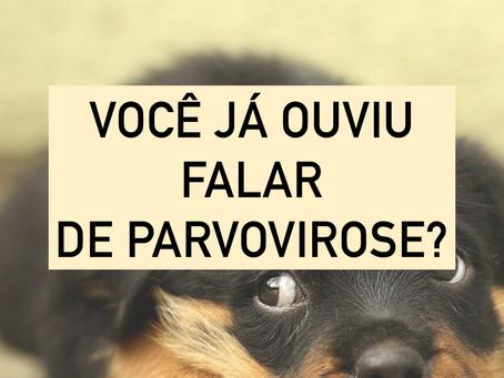 Já ouviu falar em Parvovirose?