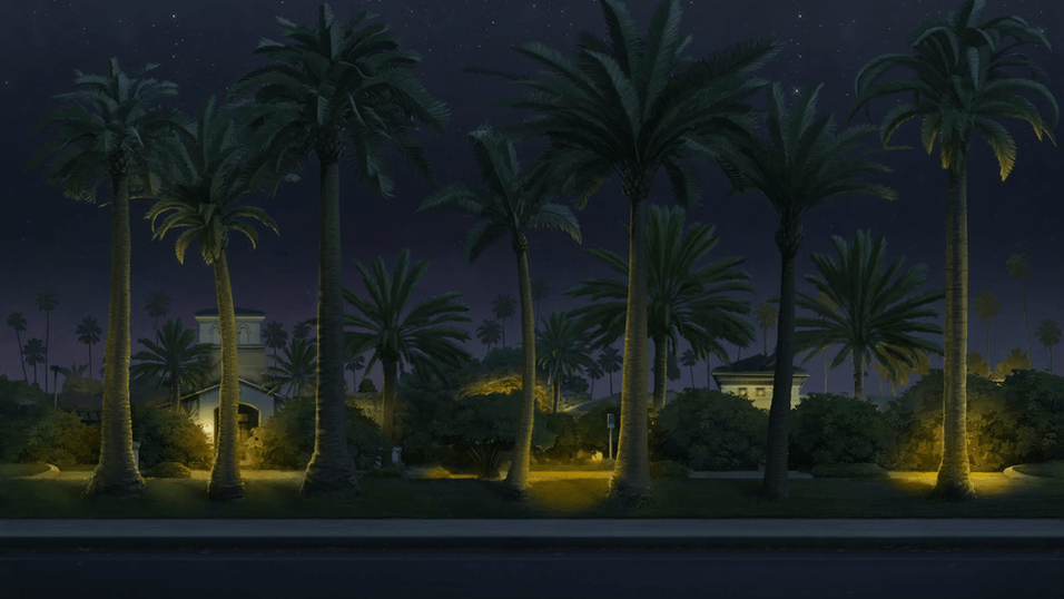PALM TREE STREET - NIGHT