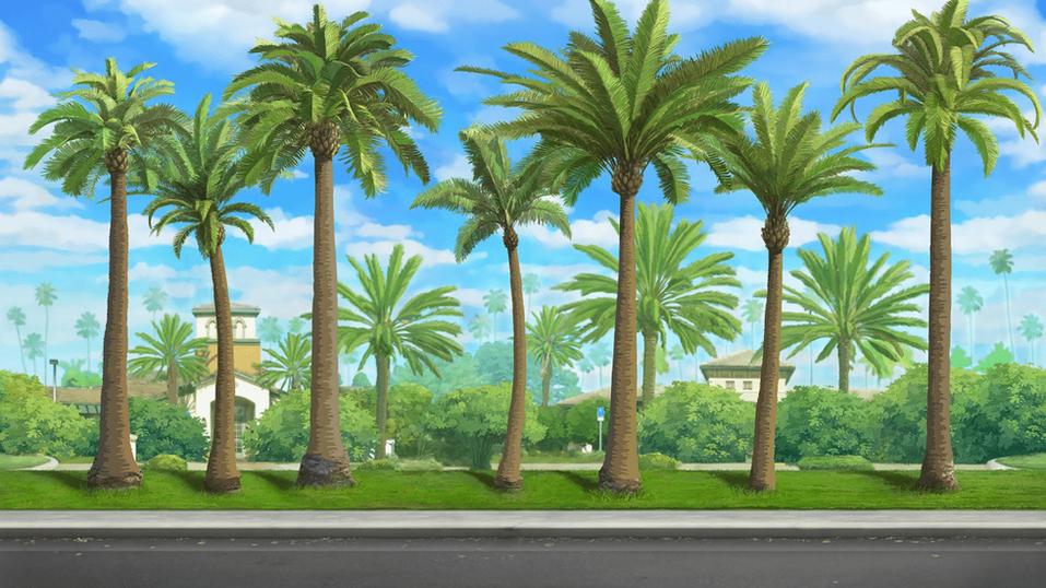 PALM TREE STREET - DAY