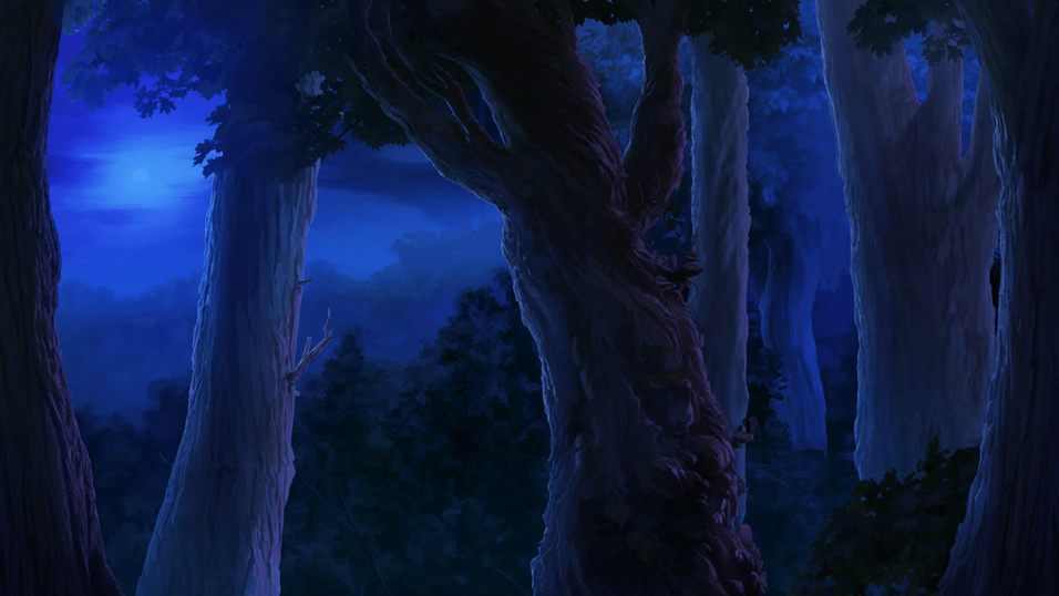 FOREST - NIGHT