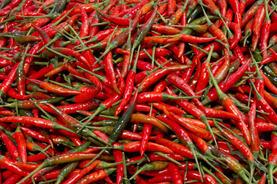 Bird's Eye Thai Pepper