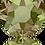 Thumbnail: 2078-Crystal Luminous Green