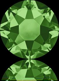 2078-Fern Green