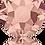 Thumbnail: 2078-Blush Rose