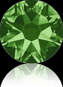 2088-Fern Green