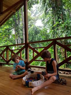 Costa Rica: Macaw Mini