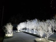 D2 Place Snowland