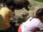 fattoria didattica attività bambini