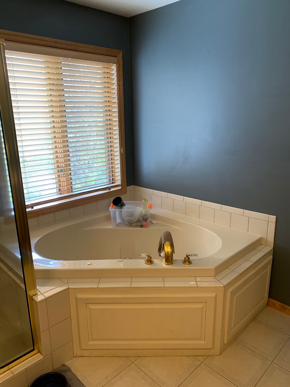 Master Bathroom Before | Pinnacle Interior Designs
