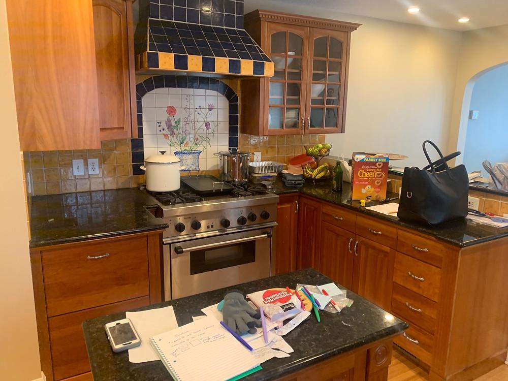 Kitchen Before | Pinnacle Interior Designs
