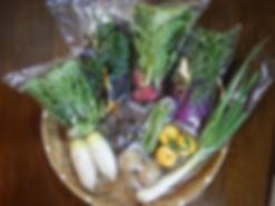 ジェイ農園の野菜セット
