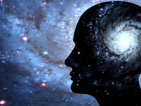 A PERSPECTIVE ON HUMAN CONSCIOUSNESS