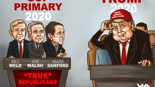Trump Alternatives: Republicans Running in 2020