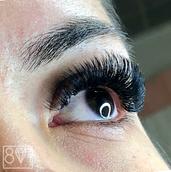801 Beauty Volume Eyelash Extensions.png