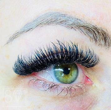 801 Beauty Volume Lash Extensions