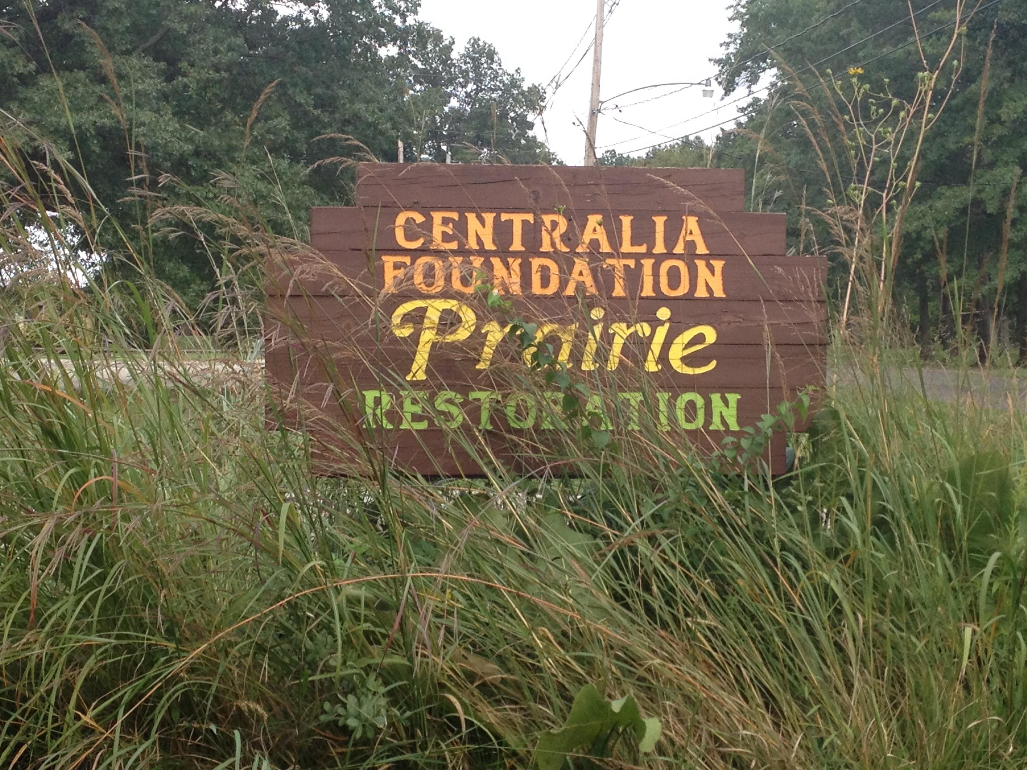 Restored Prairie