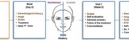 REGENERAGE® Cream Anti-aging Effect in Women Research