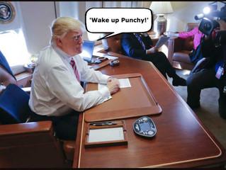 از خواب بیدار شو مشنگ!