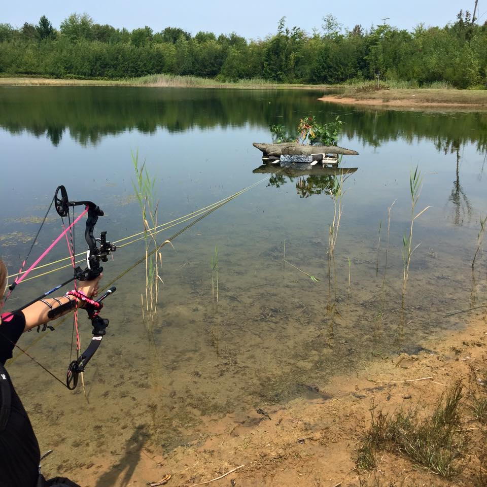 Alligator-Water Target