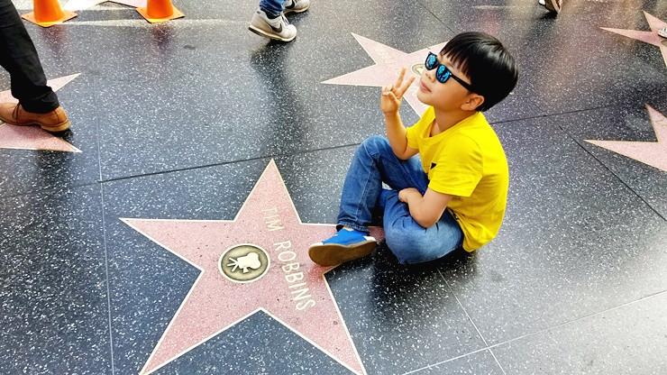 헐리우드 스타의 거리