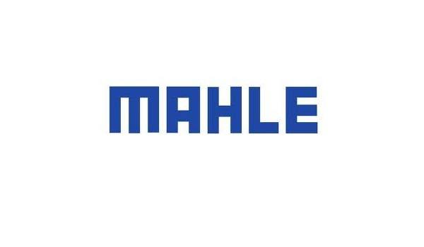 Mahle.jpg
