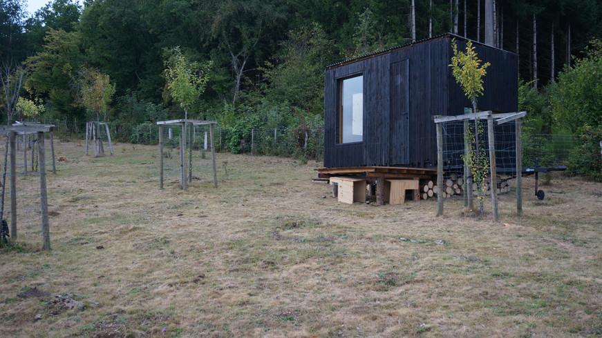 tiny house avec un bardage en bois brûlé dans la forêt