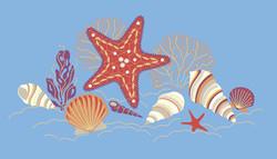 shoreline shells