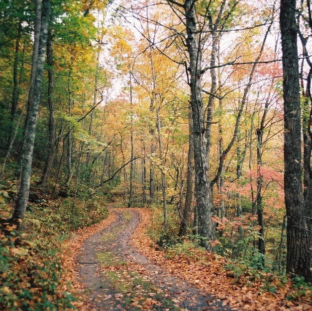October Road - Joe Meigs