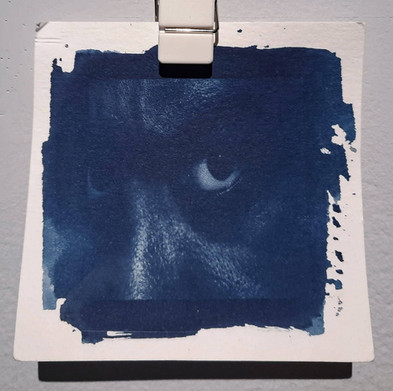 Cyanotypes Series
