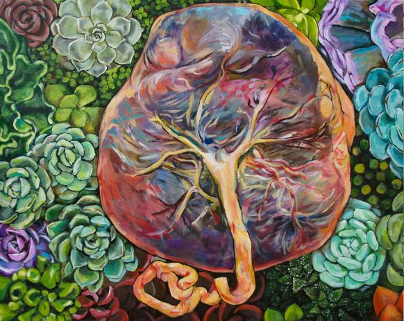 Succulent Placenta