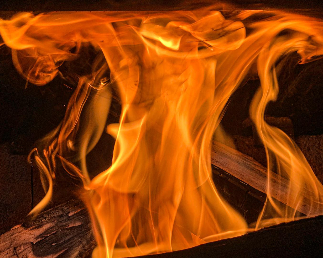 Fertile Flame