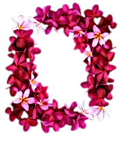 Lei.png