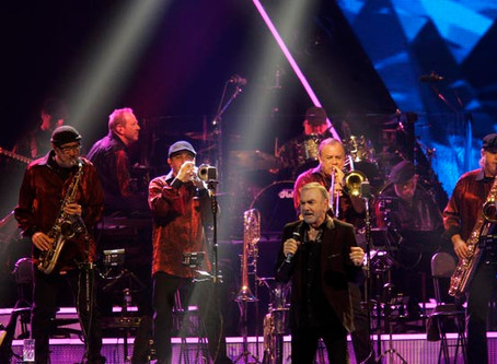 THE MEN BEHIND THE MUSIC - THE HORN DOGS: BRASS/HORN SECTION