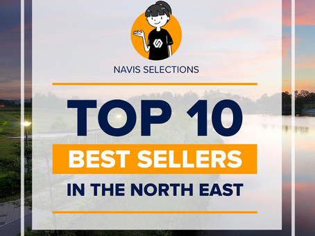 TOP 10 Best Sellers In the North-East