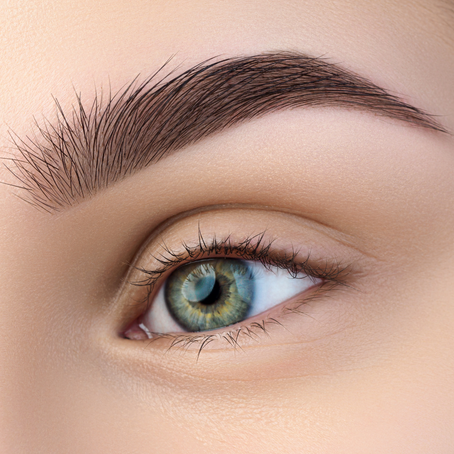 HOW TO GROW IN YOUR BROWS FAST