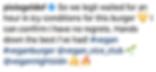 review (pixiegeldof).png