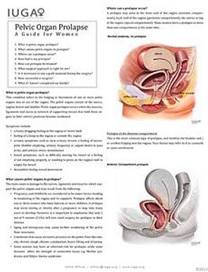 Princeton Urogynecology   Pelvic Organ Prolapse