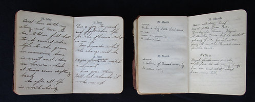TWO 23RD AMBULANCE COMPANY MEMBER'S BATTLE DIARIES