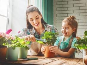 Cuidar las plantas alivia la ansiedad del encierro por la cuarentena