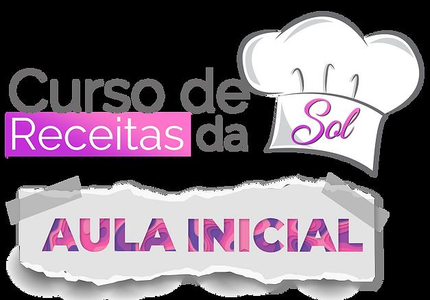 logo curso receitas AULA INICIAL t.png