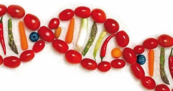 Fruta é carboidrato