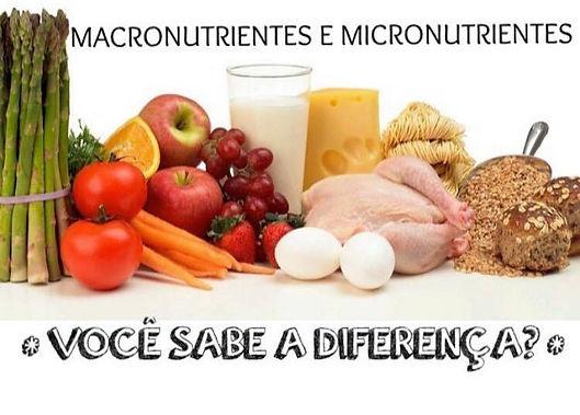 Macro e Micronutrintes
